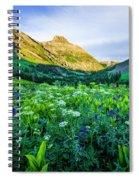 Yankee Boy Basin Flowers Spiral Notebook
