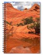 Yant Flat Hidden Gem Spiral Notebook