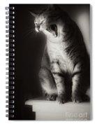 Yawning Spiral Notebook