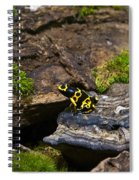 Yellow And Black Dart Frog Spiral Notebook
