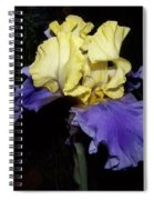 Yellow And Blue Iris Spiral Notebook