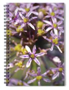 Yellow And Mauve Spiral Notebook