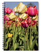 Yellow And Pink Tulips V 2018 Spiral Notebook