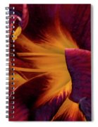 Yellow And Purple Spiral Notebook