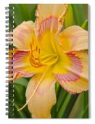 Yellow And Red Lily Spiral Notebook