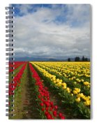 Yellow And Red Spiral Notebook