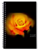 Yellow And Red Rose Spiral Notebook