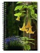Yellow Angel Trumpet Spiral Notebook