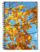 Yellow Autumn Leaves 2 Spiral Notebook