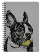 Yellow Ball  Spiral Notebook