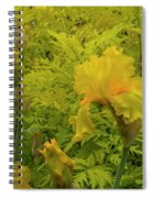 Yellow Bearded Iris Spiral Notebook