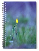 Yellow Bells Spiral Notebook