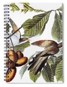 Yellow-billed Cuckoo Spiral Notebook