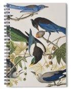 Yellow-billed Magpie Stellers Jay Ultramarine Jay Clark's Crow Spiral Notebook