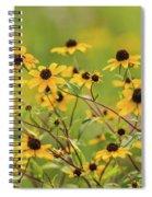 Yellow Black Eyed Susan Wildflowers In Summer Spiral Notebook
