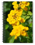 Yellow Blooms Spiral Notebook