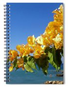 Yellow Bougainvillea Over The Mediterranean On The Island Of Cyprus Spiral Notebook