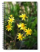 Yellow Bouquet On The Trail Spiral Notebook