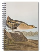 Yellow-breasted Rail Spiral Notebook