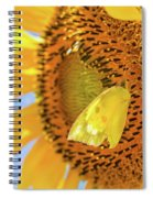 Yellow Butterfly And Sunflower Spiral Notebook