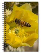 Yellow Cactus Flower With Wasp Spiral Notebook