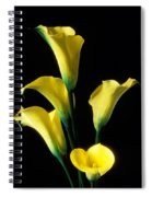 Yellow Calla Lilies  Spiral Notebook