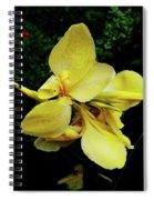 Yellow Canna  Spiral Notebook