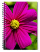 Yellow Center Spiral Notebook