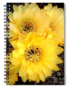 Yellow Cereus Spiral Notebook