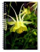 Yellow Columbine 1 Spiral Notebook