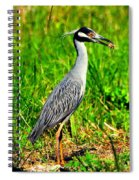 Yellow Crested Night Heron Catches A Fiddler Crab Spiral Notebook