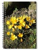 Yellow Crocus 1 Spiral Notebook