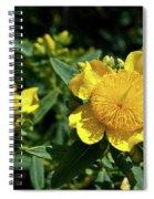 Yellow Crown Flower Spiral Notebook