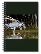 Yellow Crowned Night Heron Catches A Crab Spiral Notebook