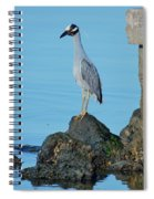 Yellow Crowned Night Heron Rocking It Out Spiral Notebook
