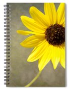 Yellow Daisy By Darrell Hutto Spiral Notebook