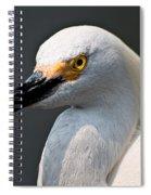 Yellow Eye Spiral Notebook