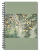 Yellow Finch Spiral Notebook
