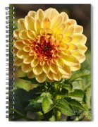 Yellow Flora Spiral Notebook