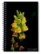 Yellow Floral 7-24-09 Spiral Notebook