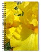 Yellow Floral Irises Flowers Art Prints Baslee Troutman Spiral Notebook