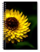 Yellow Flower 6 Spiral Notebook