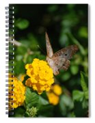 Yellow Flower Brown Fly Spiral Notebook