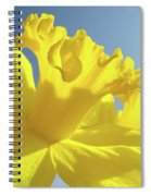 Yellow Flower Floral Daffodils Art Prints Spring Blue Sky Baslee Troutman Spiral Notebook