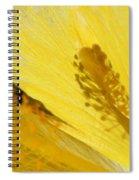 Yellow Flower - Hibiscus Shadow - Sharon Cummings Spiral Notebook