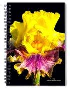 Yellow Flower On Black Spiral Notebook
