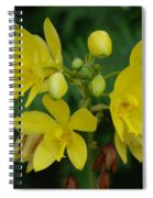 Yellow Flower Spiral Notebook