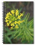 Yellow Flower Weed Spiral Notebook