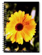 Yellow Flower With Rain Drops Spiral Notebook