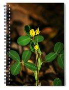 Yellow Flowers II Spiral Notebook
